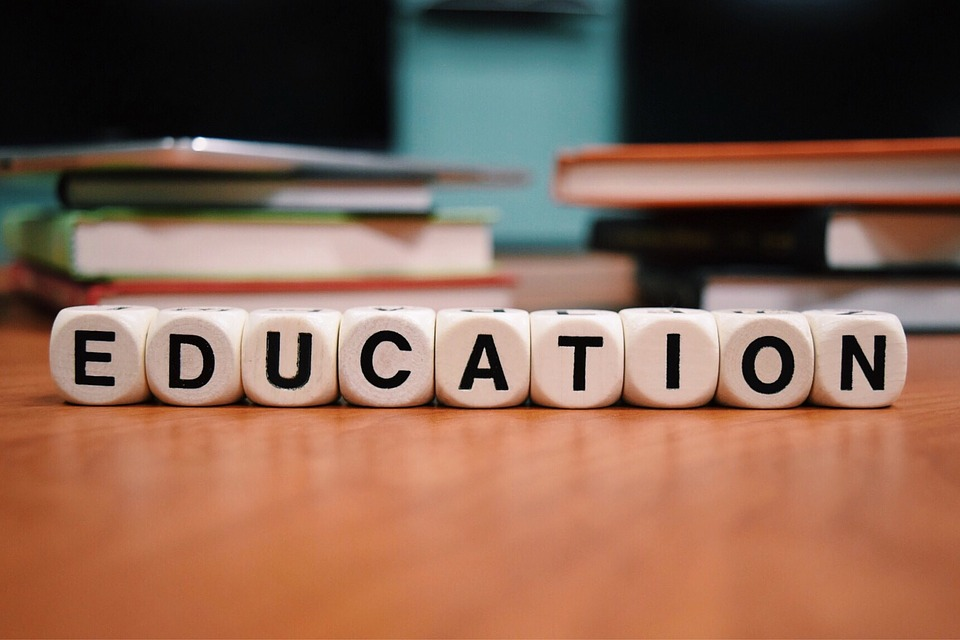 What is the role of taking admissions through study agencies?