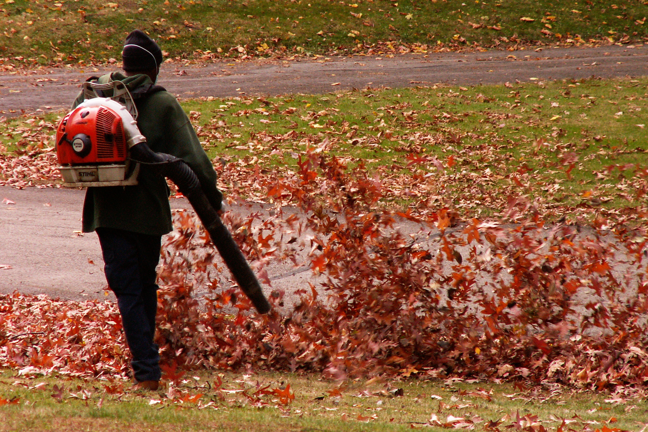 Categories Of Leaf Blowers and Vacuums