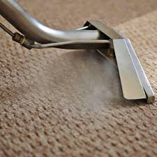 Why Hire a Professional Carpet Cleaning Company in Long Beach CA