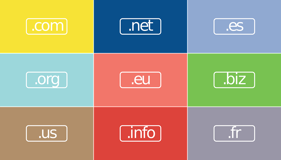 Domain Name 101: Master The Jargon Of The World Of Domains
