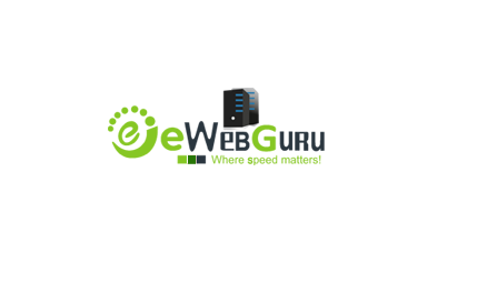WHY EWEBGURU SHOULD BE PREFERED OVER GODADDY VPS HOSTING BY INDIANS