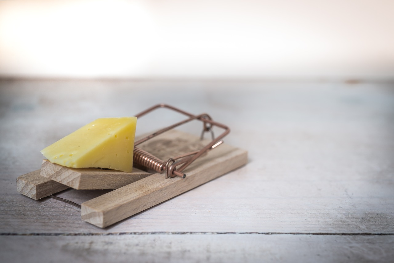 How does a mouse trap work?