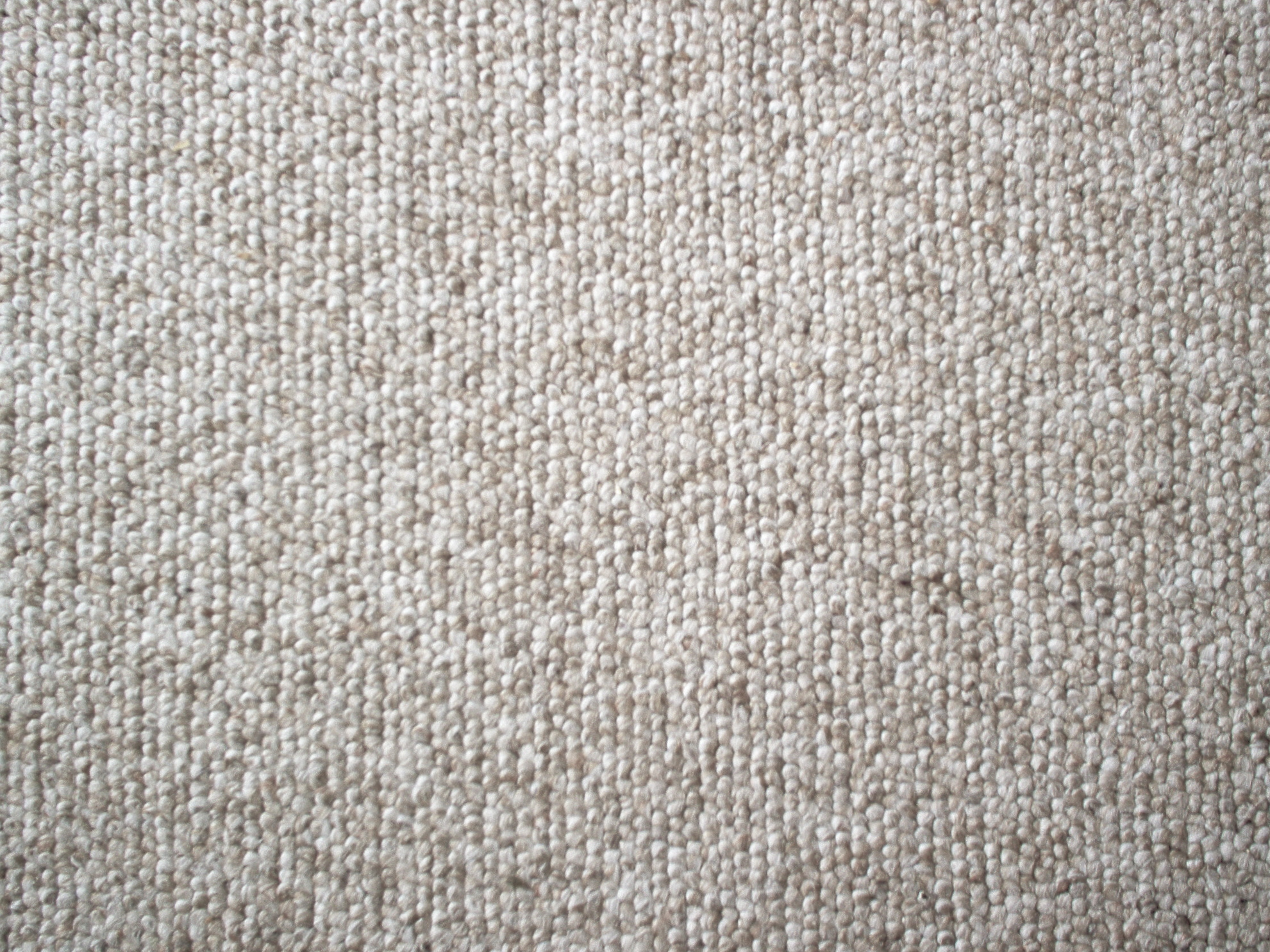 @bsolute Carpet Cleaning – Is It Worth It?