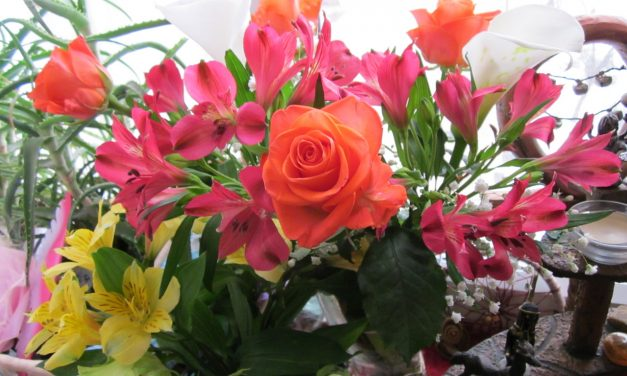 5 Handy Tips to Keep Your Cut Flowers Fresh and New