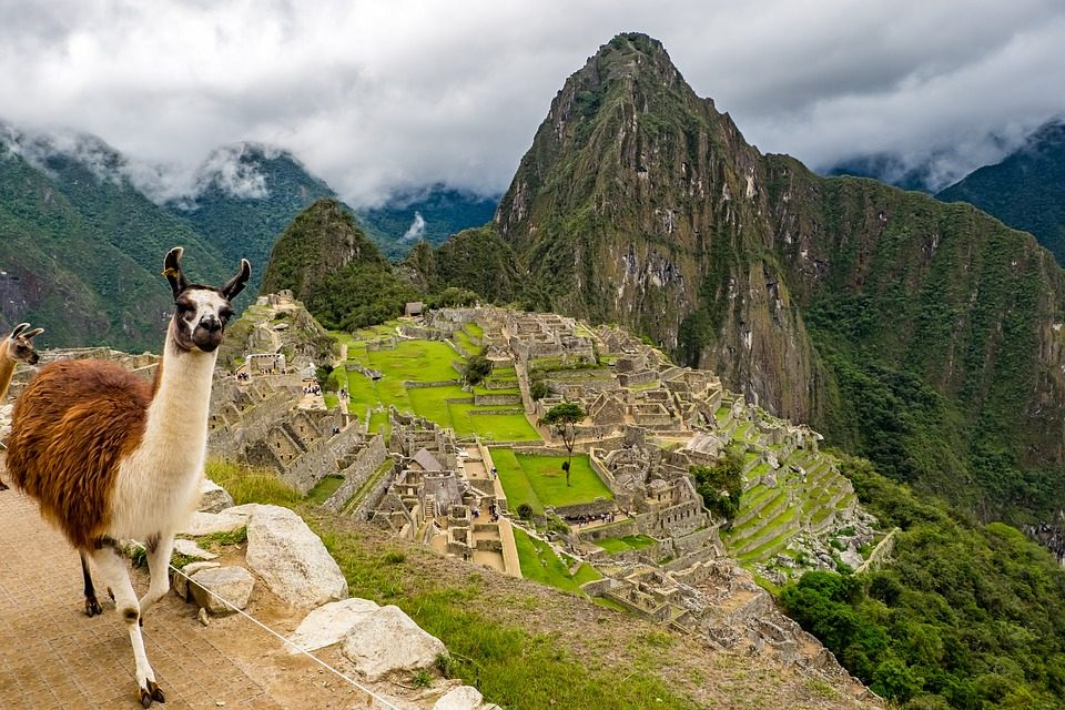 Your Ultimate Guide to Volunteering in Peru