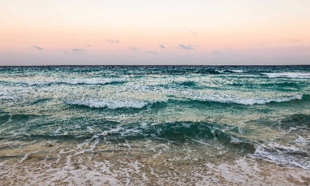 5 Best tips to have a wonderful stay in Tulum