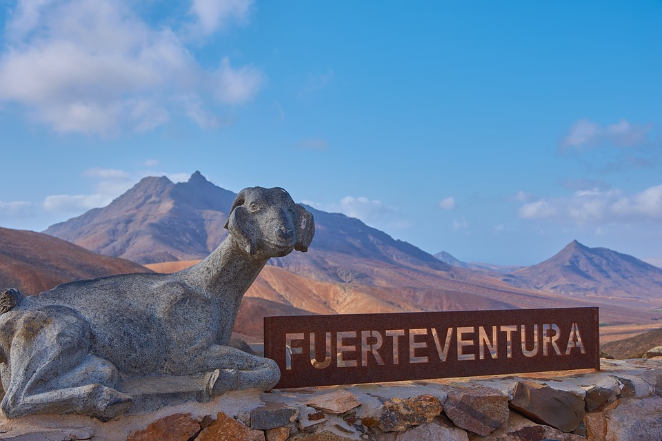 Our 10 Tips to Find the Cheapest Car Rentals in Fuerteventura