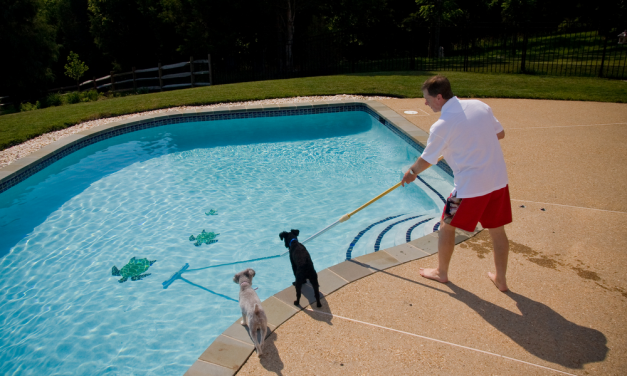What Are The Exceptional Features Of The Best Above Ground Pool Vacuum?