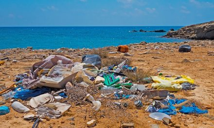 Why we must reduce the use of plastic bags