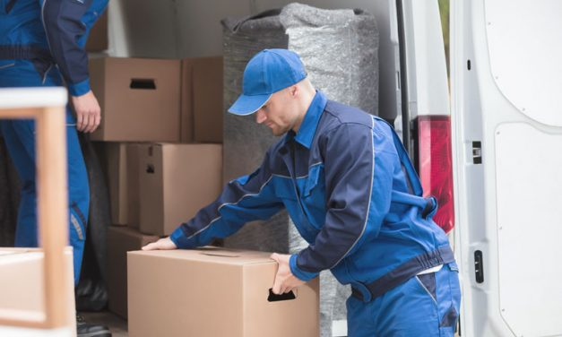 Key characteristics to consider while choosing a removalist