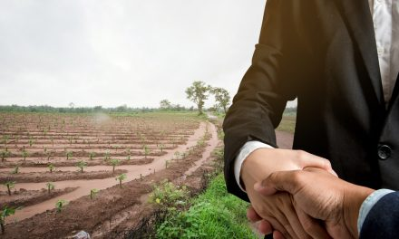 5 Creative Ways To Sell Your Land Online
