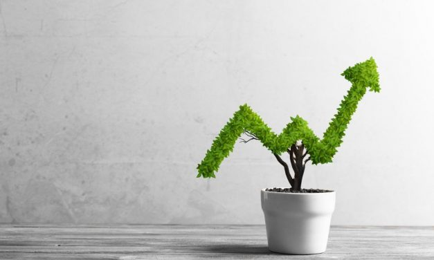 The Outsourcing Overview – Why Outsourcing is Vital For Business Growth