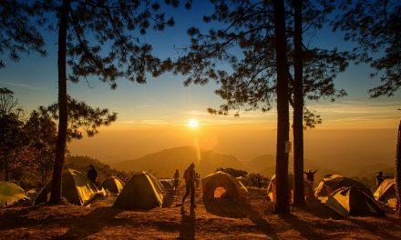 7 Great Camping Activities For Campers