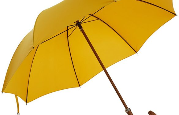 Greet the Showers in Style with the Best Umbrellas