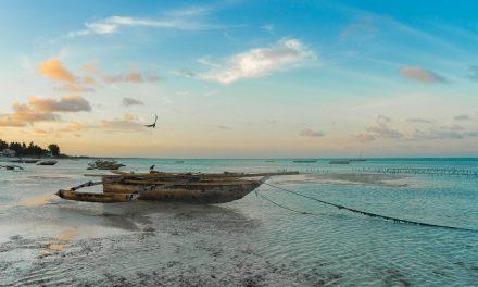 The Best Beaches in Tanzania