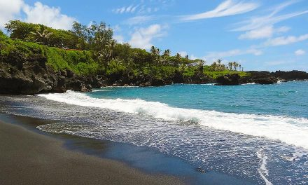 The Maui Real Estate Market