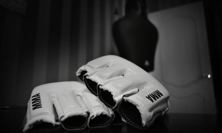 What Are MMA Gloves ?