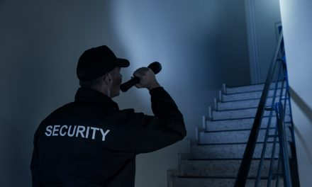 How Do Small Businesses Benefit from Security Guard Services?