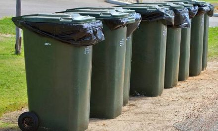 A few safety tips every skip bin user should know