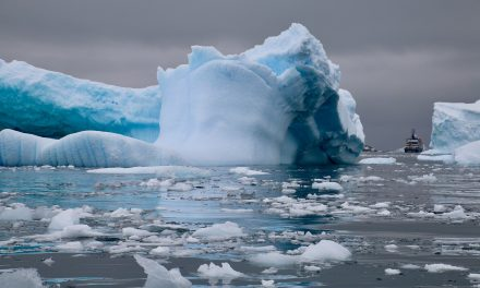 Four reasons to travel to Antarctica