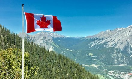 Best Online Casino Sites in Canada | A Guide to Gambling in Canada